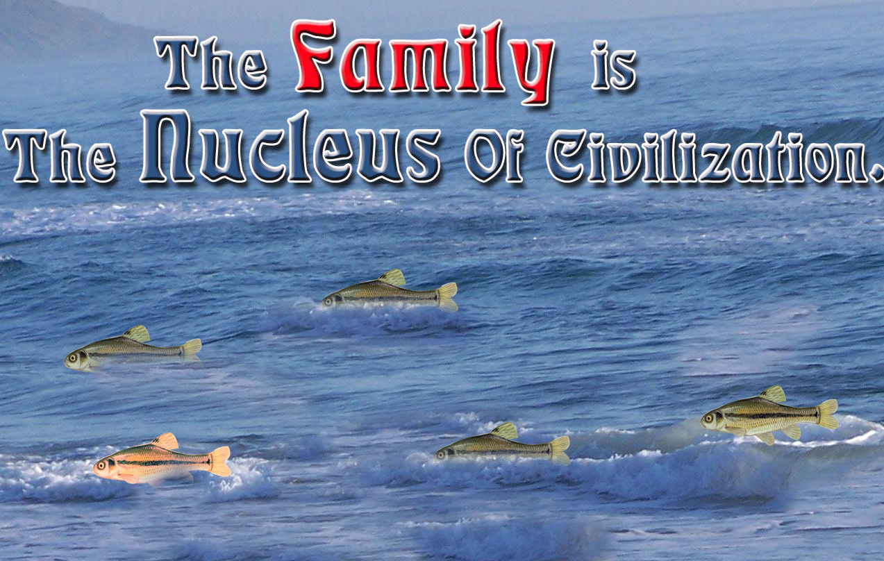 "the family is the nucleus of civilization essay ""the family is nucleus of civilization""- will durant family is said to be the first  institution of learning family life serves as an umbrella for the entire society."